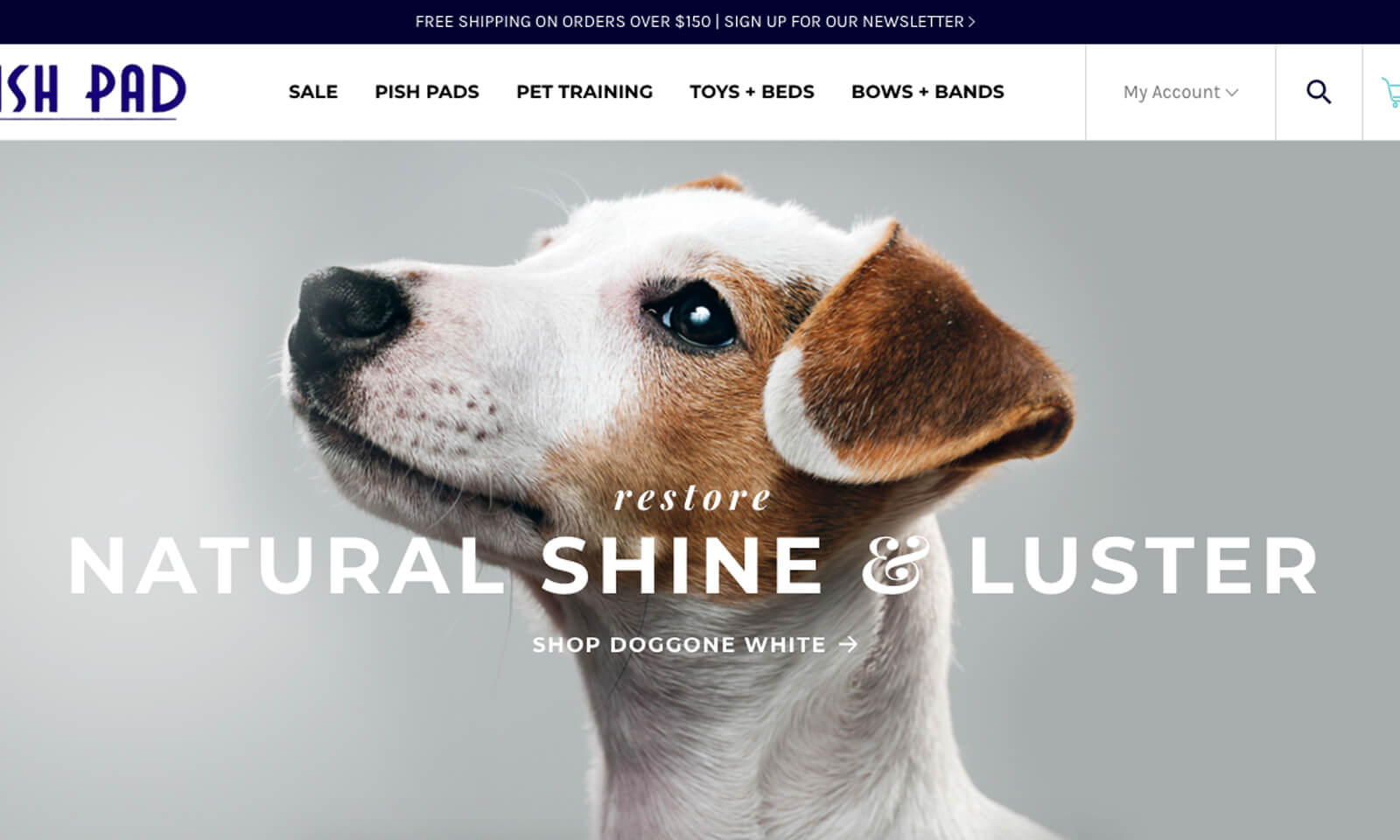 Our 4 Favorite Minimalist Ecommerce Sites